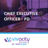 CEO Position Description